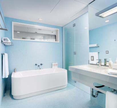 adaptirana kopalnica